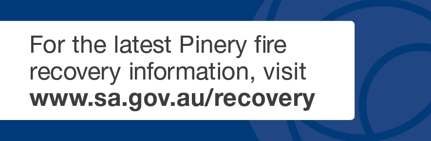 Pinery Fire Information
